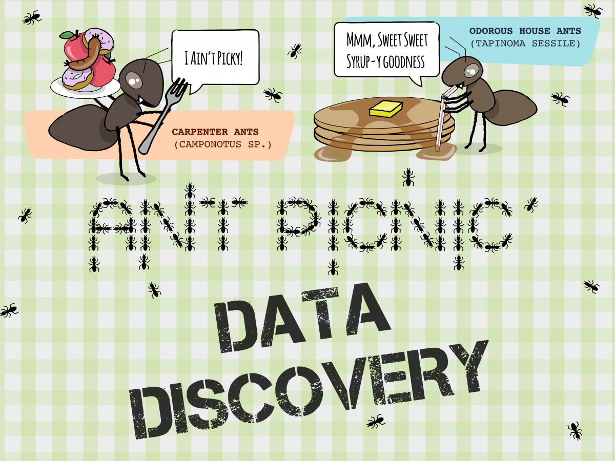 Ant Picnic Data Discovery – Students Discover