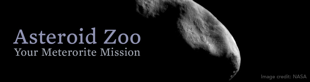 asteroid_zoo_header
