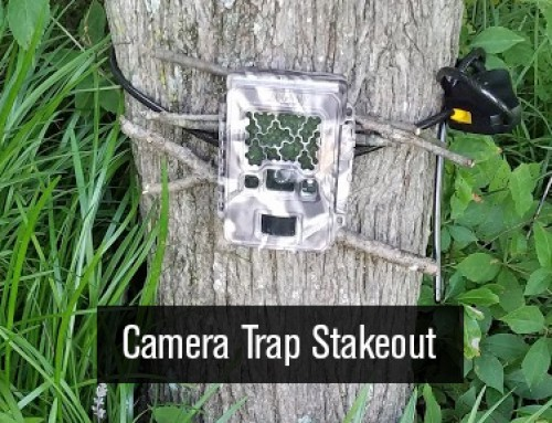 Camera Trap Stakeout