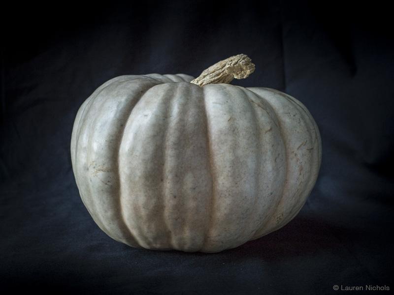 Pumpkin Portrait @ Lauren Nichols