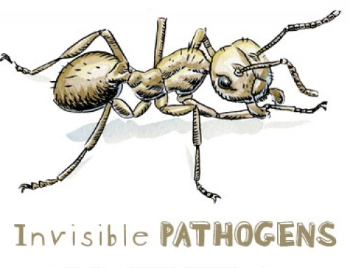 Invisible Pathogens