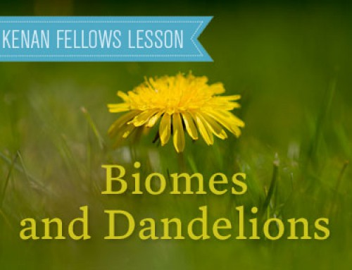 Biomes and Dandelions