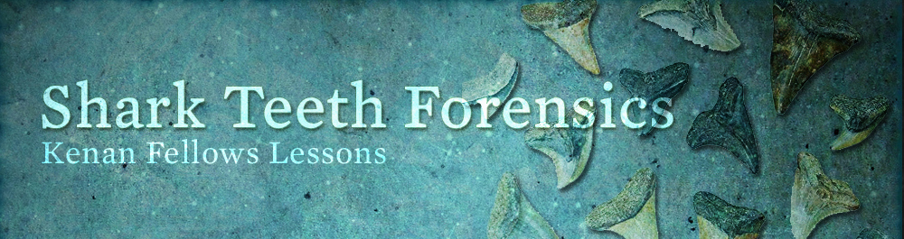 shark_teeth_forensics_lessons