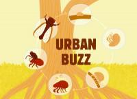 urban-buzz